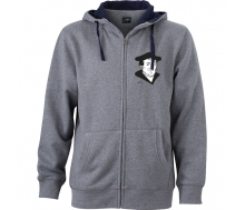Men´s Lifestyle Zip-Hoody grey